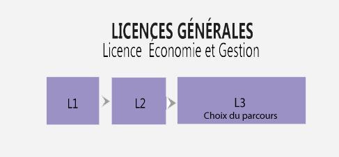 licences-generales-economie-gestion-grenoble