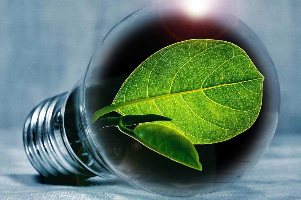 Master Économie de l'énergie et développement durable