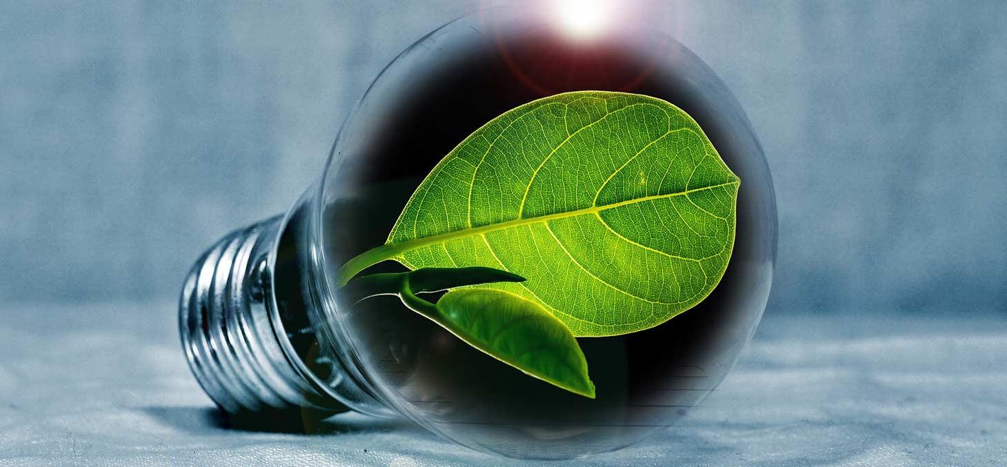 energie developpement durable